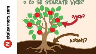 O co se staráte více? O ovoce nebo kořeny? (video)